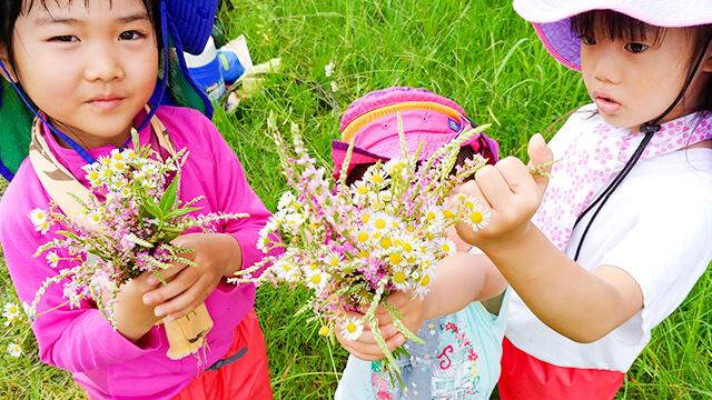 森や自然が教室、花や実が教材